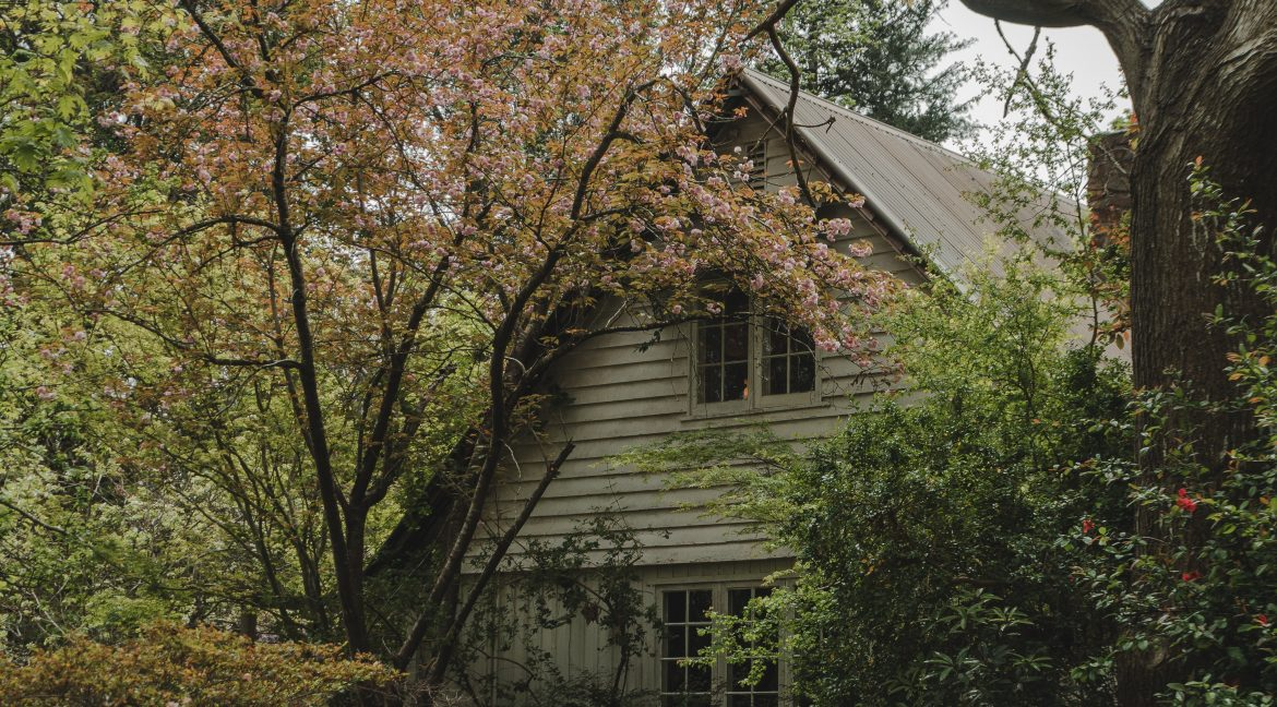 old home in the woods